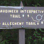 Laurel Fork and Gaudineer Trip 2012