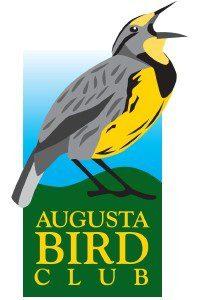 Augusta Bird Club (2)