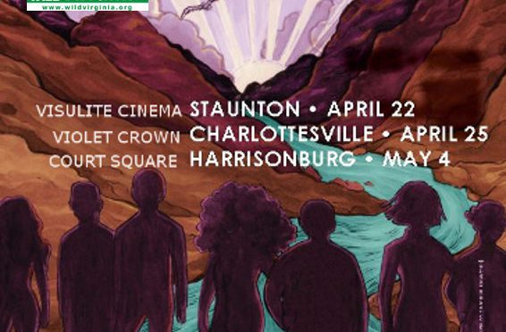 Buy Tickets: Wild and Scenic Film Fest
