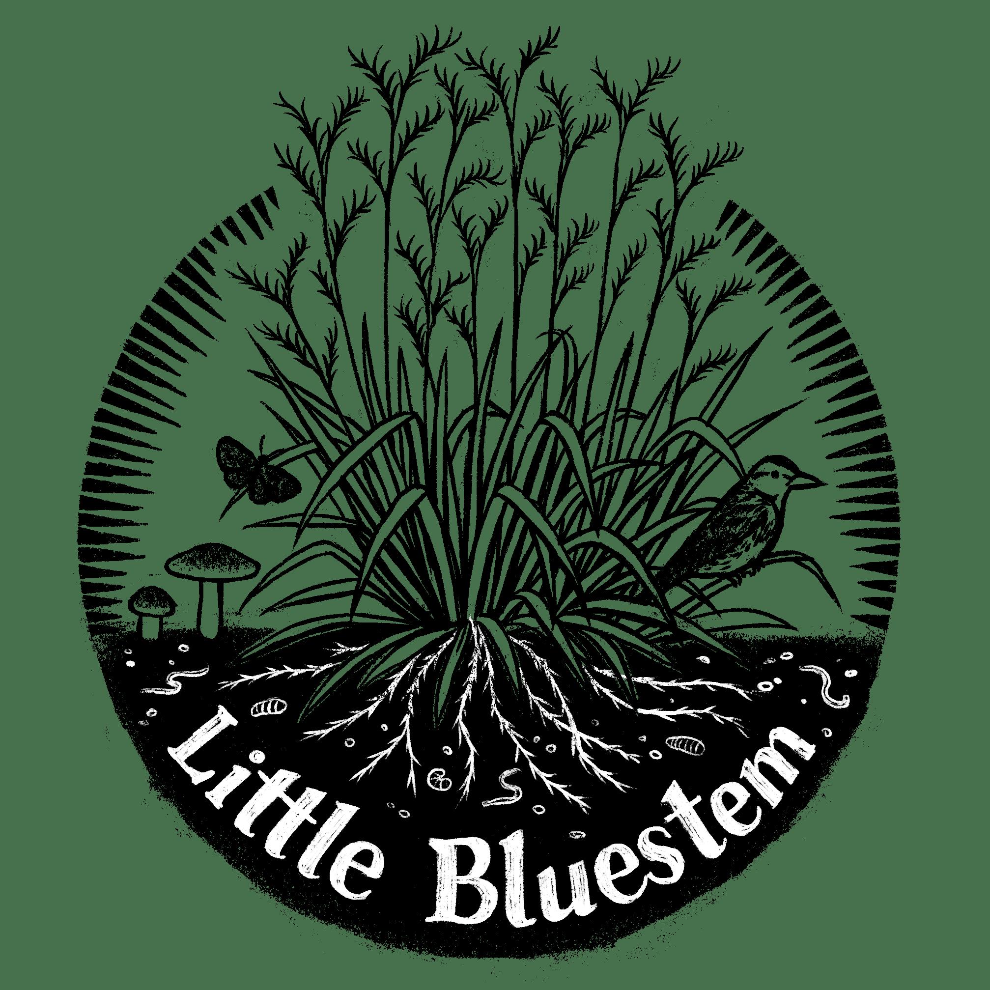 Little Blue Stem Logo