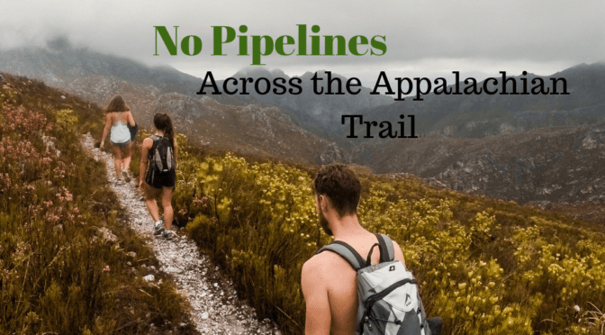 Pipeline Updates: Where Do We Stand?